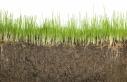 عزمِ فرانسه برایِ افزایشِ ذخیرهی کربنِ خاکهای این کشور